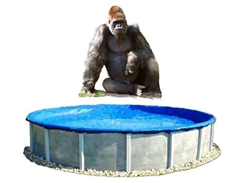 (Economy - 24' Round Above Ground Pool Winter Cover - 24 ft Gorilla Pool Cover)