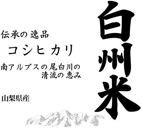 【精米】山梨県産 日本名水100選 無洗米(袋再利用) 白米 白州米 こしひかり 10kg(長期保存包装)x1袋 令和元年産