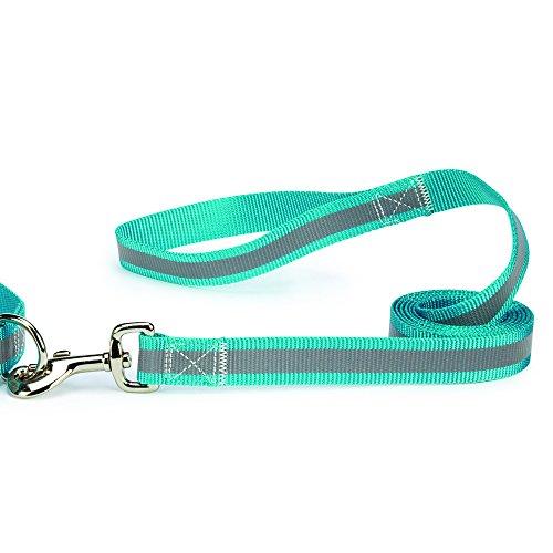Brite Reflective Dog Lead - Guardian Gear Brite Reflective Dog Leash, 6-Feet x 1-Inch Lead, Bluebird