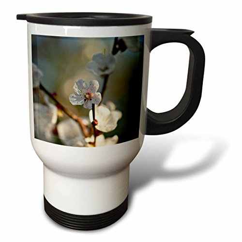 3dRose Alexis Photography - Flowers Sakura Beautiful - Beautiful Japanese apricot flower, yellow stamens, soft beige colors - 14oz Stainless Steel Travel Mug (tm_286682_1) by 3dRose