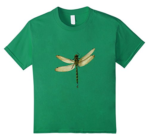 Kids Dragonflies T-shirt Insects 10 Kelly Green