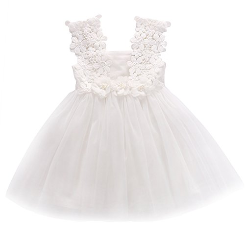 Elegant Feast Baby Girls Princess Lace Flower Tulle Tutu Gown Formal Party Dress (2-3 Years, White) (Gown Girl Flower Dress)