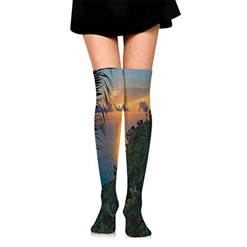 thin Silk socks Rainforest,Rainforest Sunrise on Ocean Seaside Hills Tropical Plants Leaves Print, Green Blue Orange,socks for toddler boys with grip