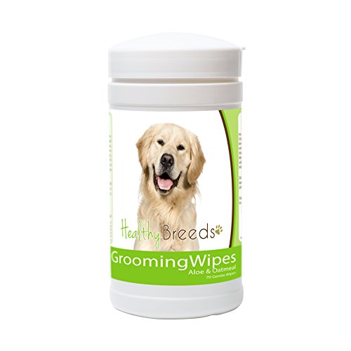Golden Retrievers Pets (Healthy Breeds Dog Wipes Deodorizing for Golden Retriever Face View - OVER 200 BREEDS - For Paws Butt & More - 70 Wipes)
