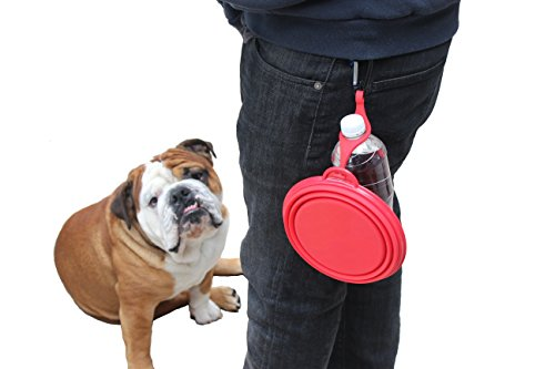 SALE-Northern-Outback-SUPERSIZE-Travel-Pet-Bowl-5-CUP-with-BONUS-Clip-and-Carabiner-XL-for-Medium-to-Large-Dogs-or-Cats-Silicone-Travel-Dog-Bowl-40oz-7-Diameter-Red