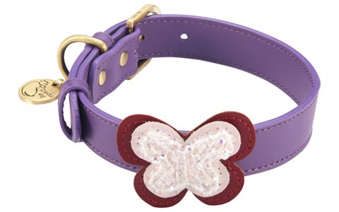 "10.5""-12"" Butterfly Purple Dog Collar 3/4"" wide, Small"