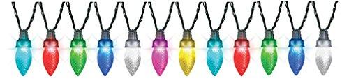 Gemmy Led Color Changing Lights in Florida - 6