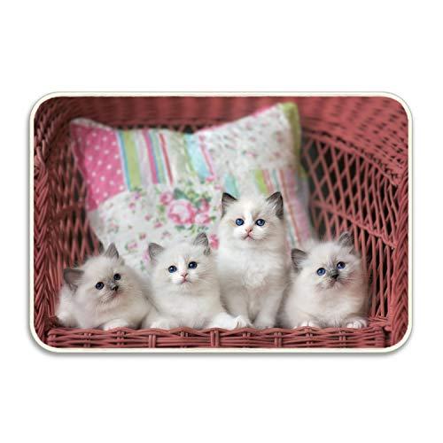 - Renee Juliana Animal Cat Kitten Ragdoll Baby Camping Door Mat Entrance Floor Mats Rug Indoor/Outdoor/Front Door/Bathroom Mats Rubber Non Slip 20