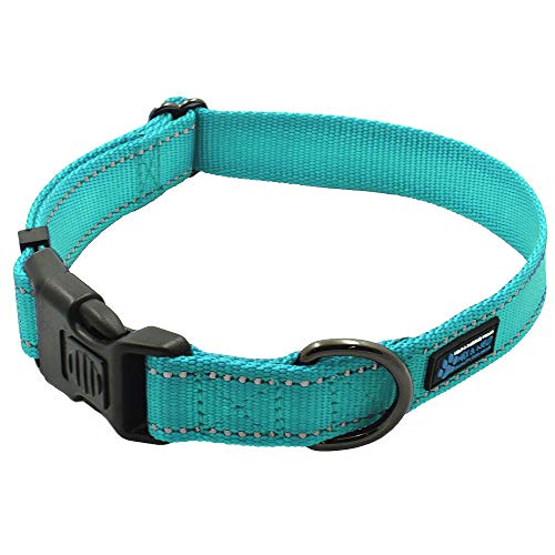 - Max and Neo&Trade; NEO Nylon Buckle Reflective Dog Collar - We Donate a Collar to a Dog Rescue for Every Collar Sold (Small, Teal)