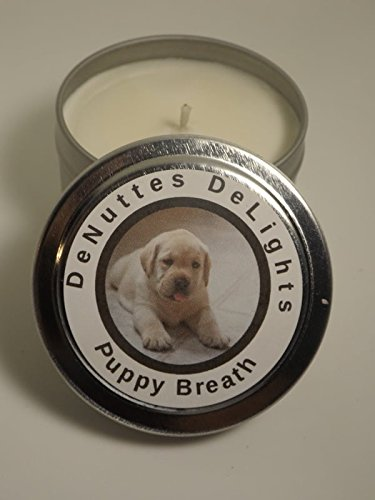 Amazoncom Puppy Breath Soy Candle 4 Oz Denuttes Delights Redneck