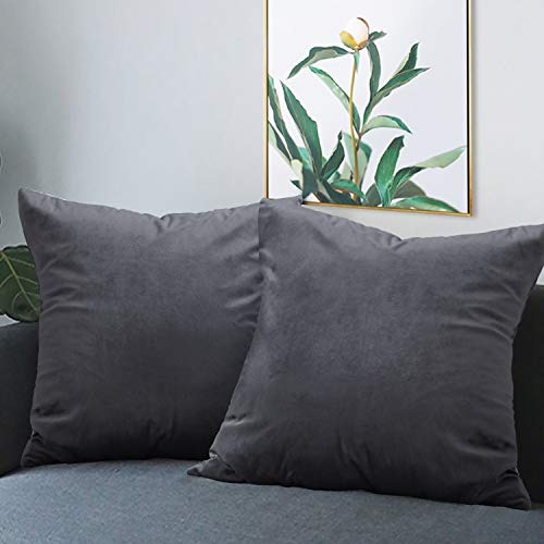- BGment Pack of 2 Soft Velvet Throw Pillow Covers, Decorative Square Cushion Cases for Sofa Car, Bedroom, Living Room, 18 x 18 Inch, Grey