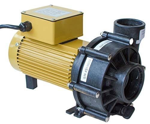 (ReeFlo Dart/Snapper Hybrid Pump (3600/2600 gph))
