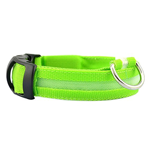 3 Lighting Modes, HongXander Safety Pet Collar For Lighted Up Nylon Solid LED Dog Collar Glow Necklace (L, Green)