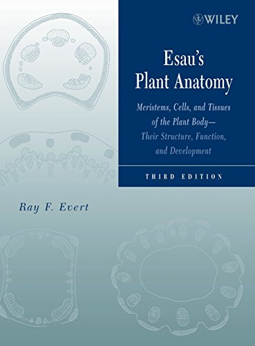 Esau's Plant Anatomy: Meristems, Cells, and Tissues of the Plant Body: Their Structure, Function, and Development, 3rd Edition (And Structure Plants Of Function)