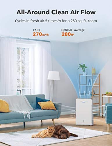 Get $25 off a HEPA air purifier