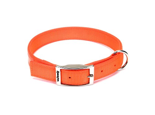"Remington Double-Ply Reflective Hound Dog Collar ,1"" by 18"", Safety Orange Color, 1-Unit"