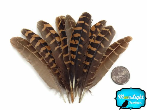 Boe Costume Face Of (Moonlight Feather | Partridge Feathers - Natural Brown Partridge Wing Feathers - 10)