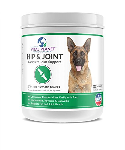 Vital Planet - Natural Hip and Joint Supplement for Dogs - HIP & JOINT Powder - Complete Joint Support Grain Free, Gluten Free, Soy Free and Non-GMO! - 60 Scoops by Vital Planet