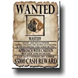 Mastiff Wanted Fridge Magnet
