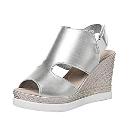 Solid Color Wedge Sandals Summer Fashion Fish Mouth Flat High Heel Casual Sandals Ladies Summer Open Toe Sandals Meeya Silver