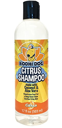 new-refreshing-orange-citrus-pet-shampoo-coconut-and-aloe-vera-all-natural-soothing-moisturizing-dog