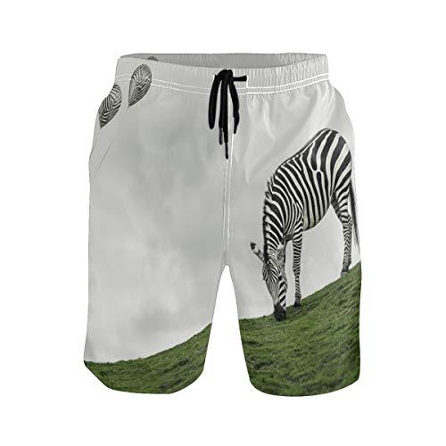 Ma Xski Zebra Eat Grass Slope Balloon Men's Shorts mesh Lining Men's Swimming Shorts_M