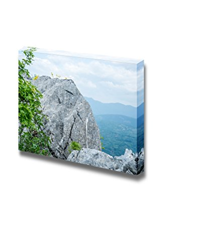 Great Rock at The Top of The Hill with Yellow Flowers and Branches Wall Decor