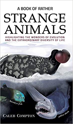 The A Book of Rather Strange Animals by Caleb Compton travel product recommended by Alisha Billmen on Lifney.