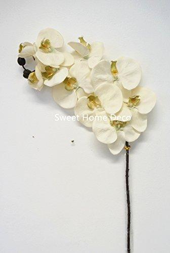 Phalaenopsis Silk Orchid Plant Cream - 5