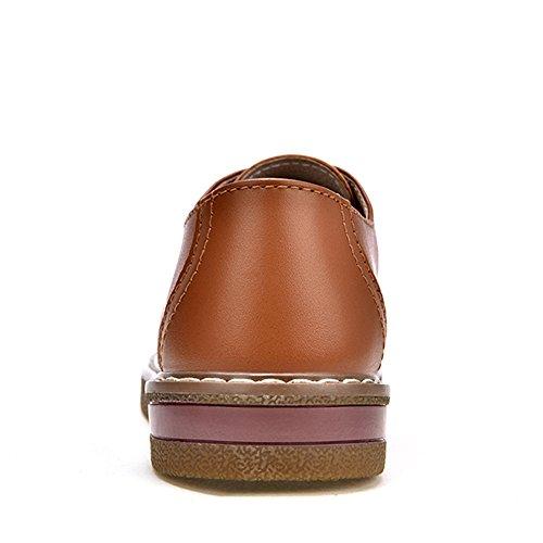 Flat Z SUO Oxford Shoe Classic Faux up Leather Brown Women Lace qFtrFO6