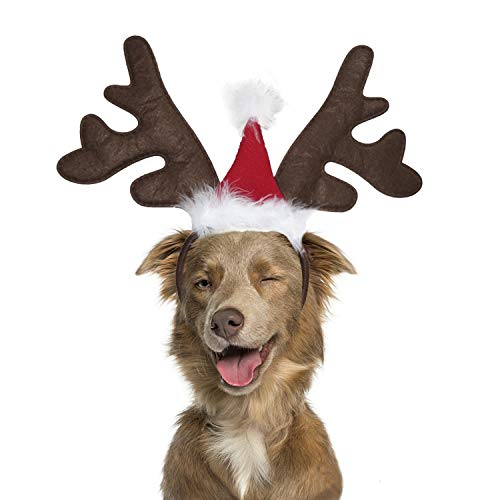 BWOGUE Dog Elk Reindeer Antler Headband with Santa Hat Pet Pet Christmas Costume Headwear Accessories for Dogs and Cats
