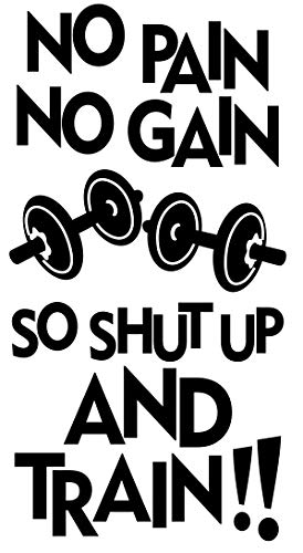 No Pain No Gain So Shut Up And Train Training Motivation Workout