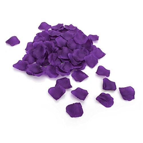 Aspire 4000 Pieces Silk Rose Petals, Artificial Flower Confetti, Wedding/Party/Gift Decoration-Dark Purple