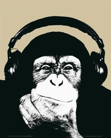 - Steez Monkey Headphones Urban Pop Art Music Poster 16 x 20 inches