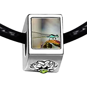 Chicforest Silver Plated Beautiful Lovely Dragonfly Photo Peridot Crystal August Birthstone Flower Charm Beads Fits Pandora Charms