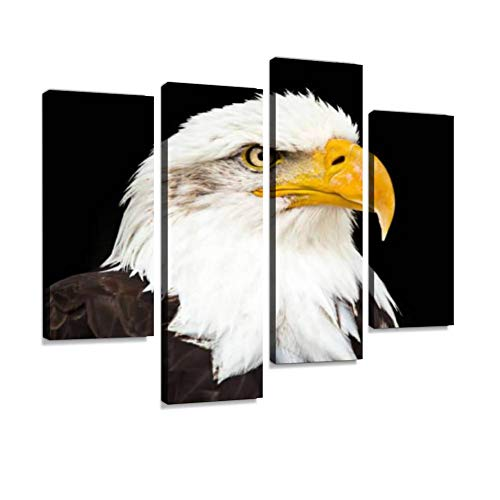 Canvas Wall Art Painting Pictures Portrait of a Bald Eagle haliaeetus leucocephalus Modern Artwork Framed Posters for Living Room Ready to Hang Home Decor - Eagle Portrait Bald