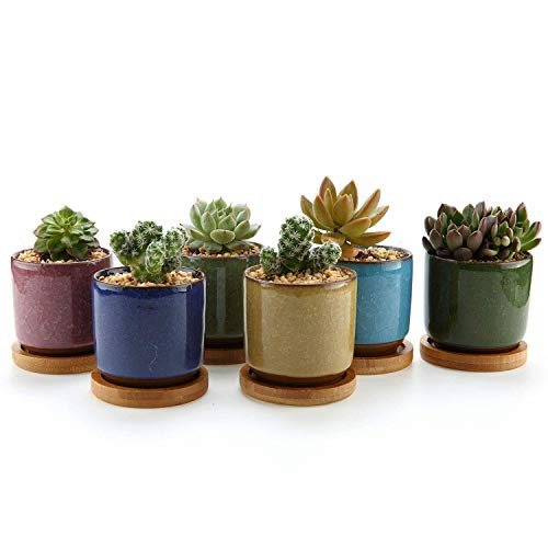 T4U 2.5 Inch Ceramic Ice Crack Zisha Raised Serial Sucuulent Plant Pot/Cactus Plant Pot Flower Pot/Container/Planter with Bamboo Trays Full Colors Package 1 Pack of 6