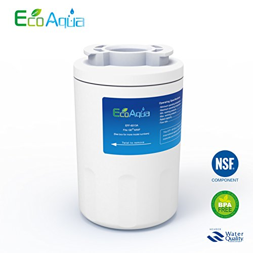 EcoAqua EFF-6013A Replacement for GE MWF, also Fits Amana