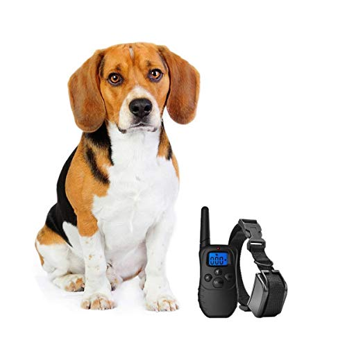 eXuby Dog Training Collar with Remote - Correct Any Behavior with 3 Training Modes (Sound, Vibration & Shock) - Rechargeable Batteries - Free Clicker