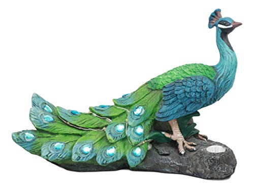 - Ebros Decorative Iridescent Peacock with Beautiful Blue Gemstone Feathers Solar LED Light Statue 11