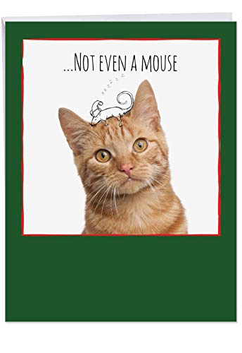 (Supersized 8.5 x 11 Inch 'Feline Graffiti Mouse' Xmas Card with Envelope - Orange Fur Coat Cat and Doodled Mouse Ready for The Christmas Season - Animal Holiday and Christmas Stationery J6583FXSB)