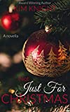Not Just For Christmas: Romance Novella (Romance in The City Book 2)