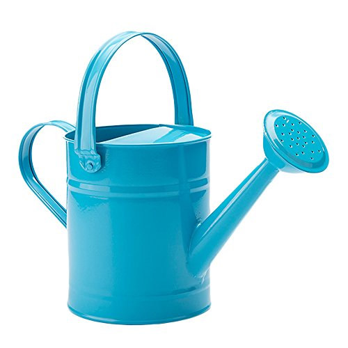 FLYING BALLOON Multi-Color Metal Watering Can and Plastic Watering Pot Set for Garden, Rose Pink/Green/Blue (Green Metal Watering Can)