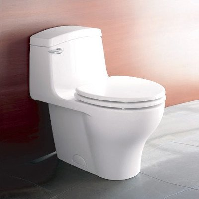 Veneto 1.6 GPF Elongated 1 Piece Toilet Finish: (Porcher Toilet Bowl)