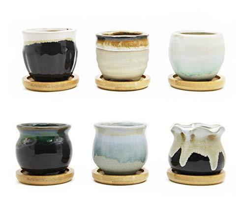 goldblue Flowing Glaze Black&White Base Ceramic Succulent Plant Pot with Bamboo Drip Tray Cactus Plant Pot Flower Pot Container Planter (2.5 Inch-6Pack)