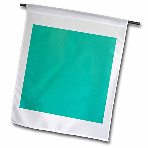 3dRose Florene - Designer Colors for Spring and Summer - Print of Solid Pistachio Green Color - 12 x 18 inch Garden Flag (fl_221045_1) ()