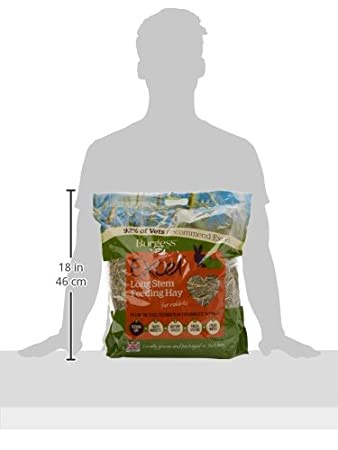1 kg Excel Burgess Long Stem Feeding Hay