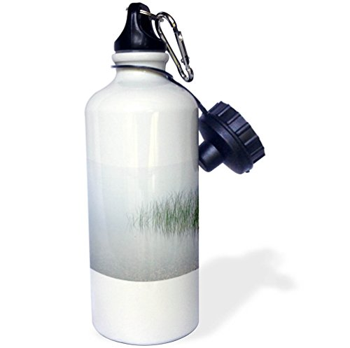 3dRose Danita Delimont - Lakes - USA, Minnesota, Walker, Fog covers Leech Lake - 21 oz Sports Water Bottle (wb_279149_1) by 3dRose