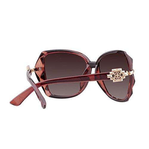 Sol El de LE Gafas Miopía Purple UV Sol de Equiparse KAI Mismo Star Color Polarizadas Gafas Gran Párrafo Puede Sra Gafas Protección Marrón Marco con Tide w0tnwAPq