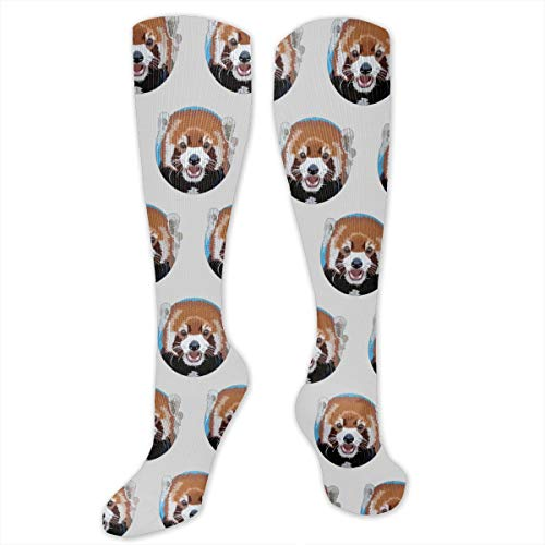 Womens Cute Funny Socks Casual Red Panda Socks - 11.8 Inches ()